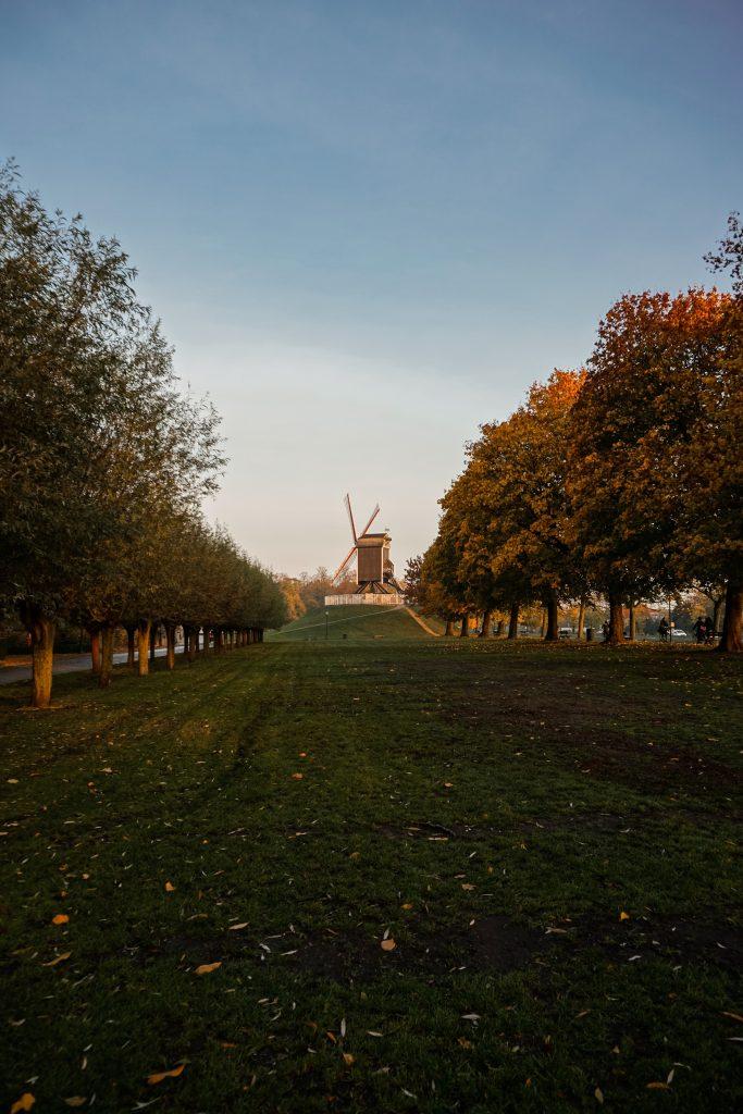 Belgio in solitaria cosa vedere in 5 giorni